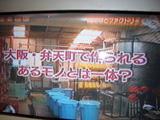 media_photo_12